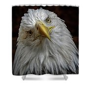 Zombie Eagle Look Shower Curtain
