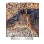 Zoo7 Shower Curtain