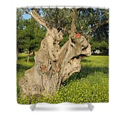 Zoomorphical Olive Shower Curtain