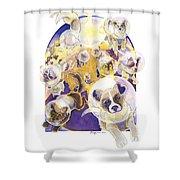 Zvezdy Sobaki Shower Curtain