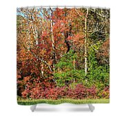 Autumn Colours In Great Smoky Mountains National Park Shower Curtain