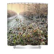 Autumn Frosts Shower Curtain