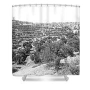 Bethlehem 1886 Shower Curtain