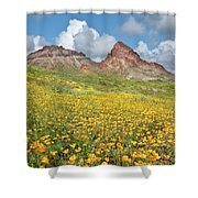Boundary Cone Butte Shower Curtain