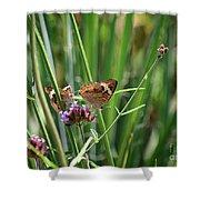 Buckeye Butterflies Shower Curtain