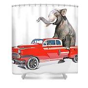 Cruising  Shower Curtain
