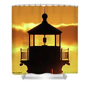 Day Light Shower Curtain