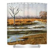Early Spring On The Marsh Shower Curtain