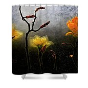 Earth To Heaven Shower Curtain