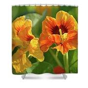 Fall Flowers Shower Curtain