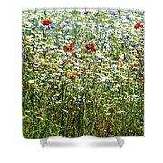 Flower Meadow Shower Curtain