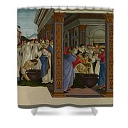 Four Scenes From The Early Life Of Saint Zenobius  Shower Curtain