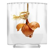 Onion On A White Background Shower Curtain