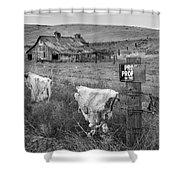 Palouse Barn 9901 Shower Curtain