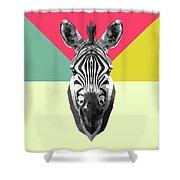 Party Zebra  Shower Curtain