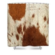 Pattern Of A Longhorn Bull Cowhide. Shower Curtain by Rob D Imagery