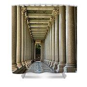 Portico Shower Curtain