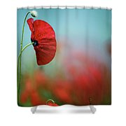 Red Corn Poppy Flowers Shower Curtain