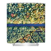 Road Through Colorful Autumn Forest Shower Curtain
