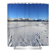 Turnagain Arm And Chugach Range From Hope Alaska Shower Curtain