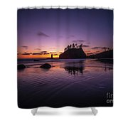 Washington Coast Last Light Shower Curtain