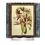 Vintage Orchid Antique Design Marble Blue-green  Shower Curtain