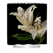White Lily On Black. Shower Curtain