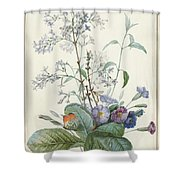 A Bouquet Of Flowers With Insects  Shower Curtain