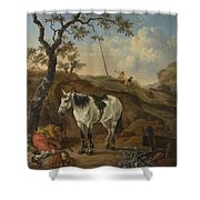 A White Horse Standing By A Sleeping Man  Shower Curtain