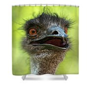 Australian Emu Outdoors Shower Curtain