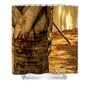 Branch To Branch Shower Curtain