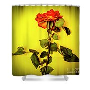 Dying Flower Against A Yellow Background Shower Curtain
