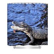 Little Gator Shower Curtain
