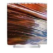Rock Formations, Vermillion Cliffs Shower Curtain