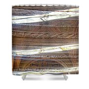 Sant'agostino Shower Curtain