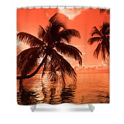 Palm Trees At Sunset, Moorea, Tahiti Shower Curtain