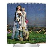 Pretty Baa-lambs Shower Curtain