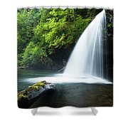 Waterfall In A Forest, Samuel H Shower Curtain