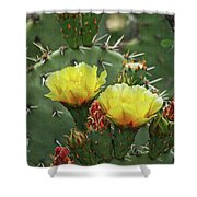 Yellow Prickly Pear Flowers Shower Curtain