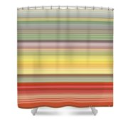 Number Forty Three, 2017 Shower Curtain