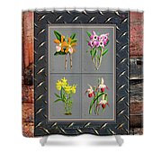 Orchids Antique Quadro Weathered Plank Rusty Metal Shower Curtain