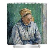 Washerwoman  Study  Shower Curtain