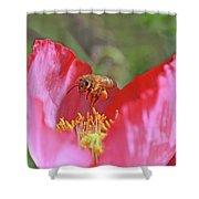 Honeybee Shower Curtain
