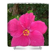 Bright Pink Hibiscus Shower Curtain