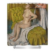 Woman Having Her Hair Combed  Shower Curtain