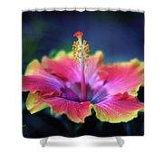 Hibiscus Delight Shower Curtain
