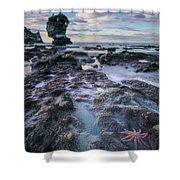 Motukiekie Beach - New Zealand Shower Curtain