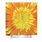 7289-yelow Gerber Shower Curtain