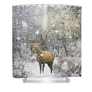 Beautiful Red Deer Stag In Snow Covered Festive Season Winter Fo Shower Curtain