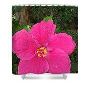 Bright Pink Hibiscus Shower Curtain